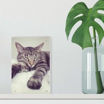 Acryl Bilderrahmen 10x15