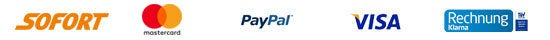 Payment Logo Footer